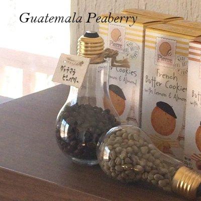 画像1: グァテマラ ピーベリー